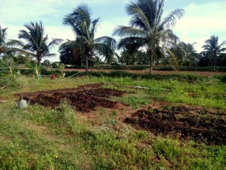 building soil-composting