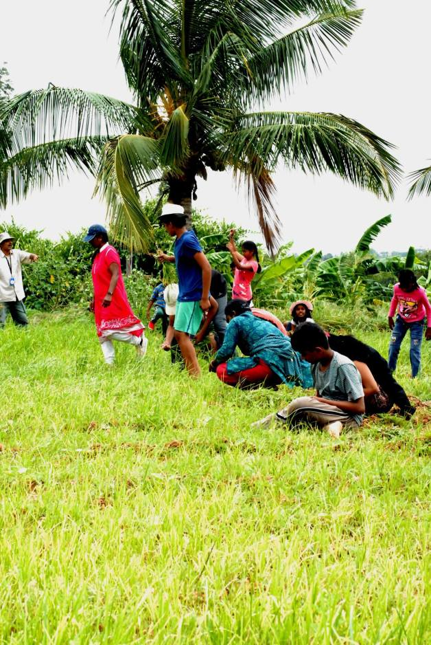 Children helping and having fun