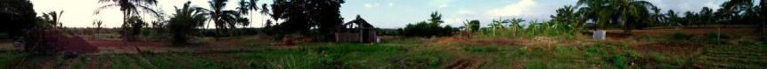 panoramic farm
