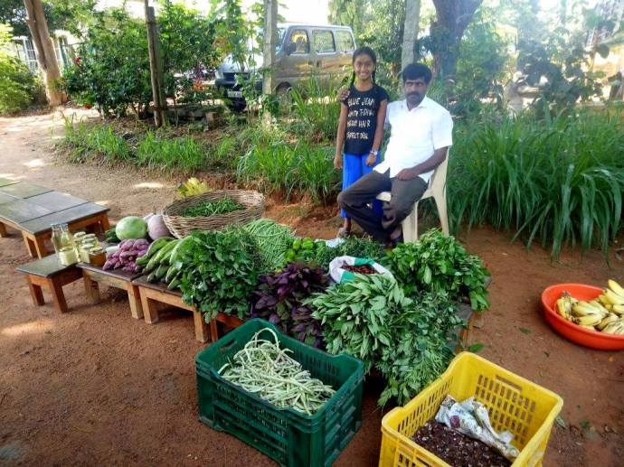 The start of the organic market in Bangalore (3)