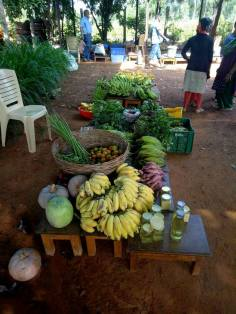 The start of the organic market in Bangalore (4)