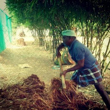 building compost heap